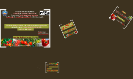 Ecofisiologia de hortaliças em ambiente protegido