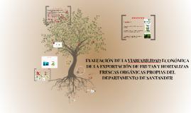 Copy of EVALUACIÓN DE LA VIABIABILIDAD ECONÓMICA DE LA EXPORTACIÓN D