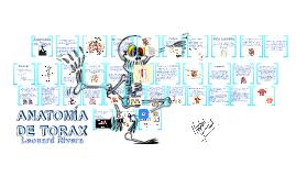 Copy of ANATOMIA  DE TORAX