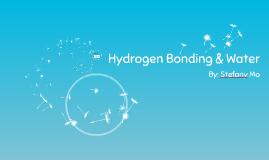 Hydrogen Bonding & Water