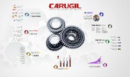 Copia de Carugil - Company Profile