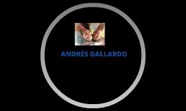 ANDRÉS GALLARDO