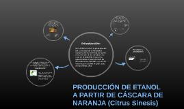 Copy of PRODUCCIÓN DE ETANOL A PARTIR DE CÁSCARA DE NARANJA (Citrus