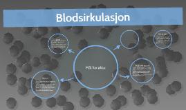 Blodsirkulasjon