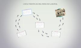 Copy of CARACTERISTICAS DEL DERECHO LABORAL