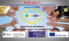 Acción clave 2: Asociaciones estrégicas en educación escolar y de adultos. Convocatoria 2014.