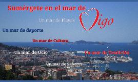 Copy of Vigo