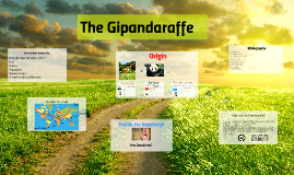 The Gipandaraffe