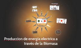 Produccion de energia electrica a través de la Biomasa