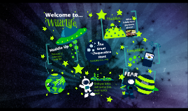 WildLife Space Theme