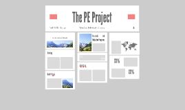 PE Project