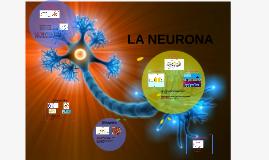 Copy of Concepto y descripción de Neurona