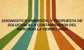 DIAGNOSTICO AMBIENTAL Y PROPUESTA DE SOLUCION A LA CONTAMINA