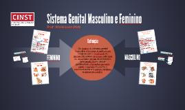 Sistema Genital Masculino e Feminino