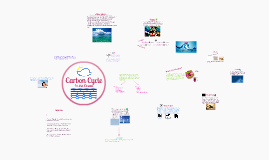 Copy of Carbon Cycle