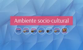 Ambiente socio-cultural