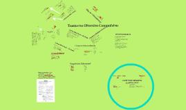 Copy of Trastorno Obsesivo Compulsivo