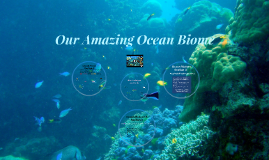 Copy of Our Amazing Ocean Biome