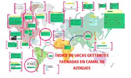 ÍNDICE DE VACAS GESTANTES FAENADAS EN CAMAL DE AZOGUES