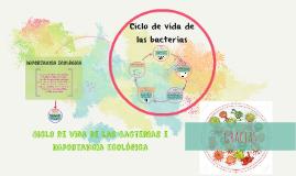 Ciclo de vida de las bacterias e importancia ecológica
