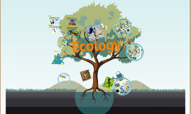 Copy of Copy of Ecology