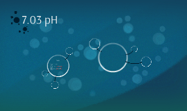 7.03 pH
