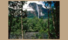 Venezuela El Medio Ambiente