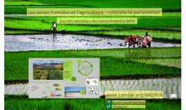 Les zones humides et l'agriculture : cultivons le partenariat!