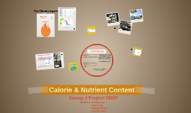 G4 Nutrient and Calorie Content