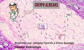 Copy of cuerpo albicans