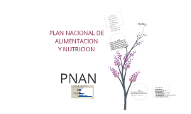 Copy of PLAN NACIONAL DE ALIMENTACION Y NUTRICION.