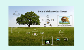 Let's Celebrate Our Trees!