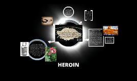 heroin research papers