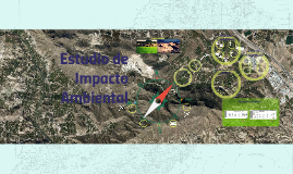 Copy of Estudio de Impacto Ambiental