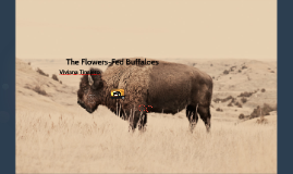 flower fed buffalos Apart from e e cummings and the genius anon, one of my chief discoveries in the voices and junior voices series that i wrote about yesterday was carl sandburg i loved his long lines, his casual-sounding chattiness and his use of repetition to build hypnotic rhythms that suddenly made you realise he was deadly serious all along.