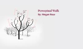 Perceptual Walk