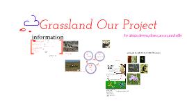 Grass Lands