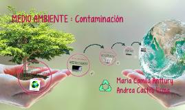 MEDIO AMBIENTE : Contaminacion