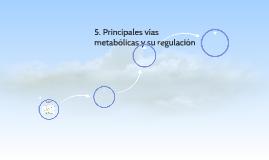 5. Principales vías metabólicas y su regulación