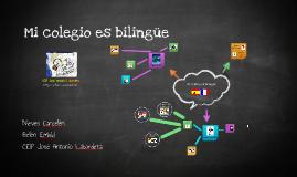 Mi colegio es bilingüe