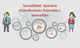 Aparatos reproductores