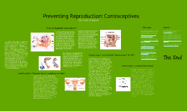 Preventing Reproduction: Contraceptives