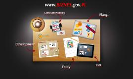 Rozwój punktu kontaktowego www.biznes.gov.PL