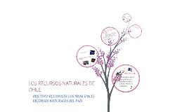 Copy of Recursos Naturales de Chile 5to básico.