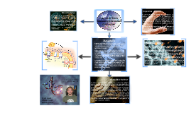 Presentacion Bio. Celular
