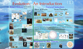 Evolution 1:  Introduction
