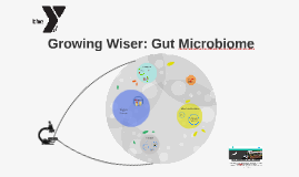 Growing Wiser: Gut Microbiome