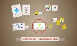 Yellowwoods Foundation: Harambee
