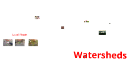 Copy of Watershed Project