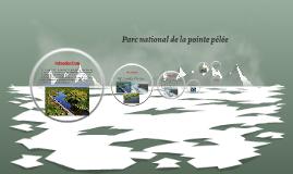 Parc national de la pointe pélée